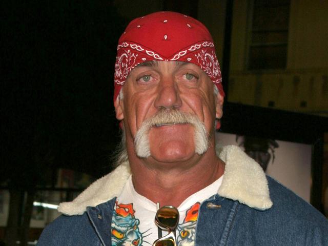 Hulk-Hogan-bigote-herradura